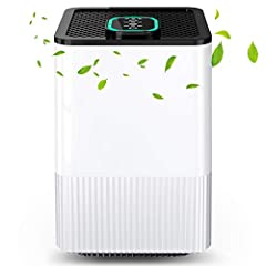 Purificateur d'air 4 en 1 avec filtre HEPA et ionisateur, purificateur d'air pour la maison avec affichage de la qualité de l'air et minuterie, allergies de capture, poussière, pollen, fumée, poils d'animaux, etc. Idéal pour la maison, bureau