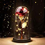 Joyhoop Rosa Eterna, Rosa Bella y Bestia, Elegante Cúpula de Cristal con Base Pino Luces LED, Regalos para Mama, Regalos Dia de la Madre, Regalos Mujer.(Regalos Perfecto & Decoración)