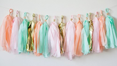 Hand Made 16 x Mint Pink Gold Apricot Tissue Paper Tassels for Party Wedding Gold Garland Bunting Pom Pom by Originals Group