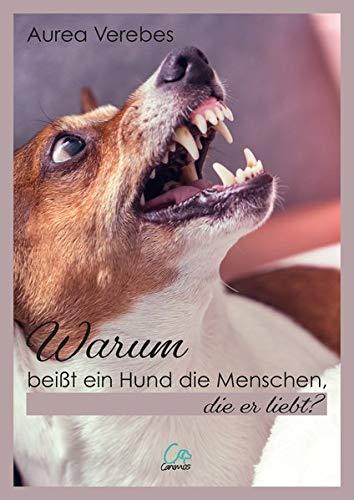 Warum beißt ein Hund die Menschen, die er liebt?