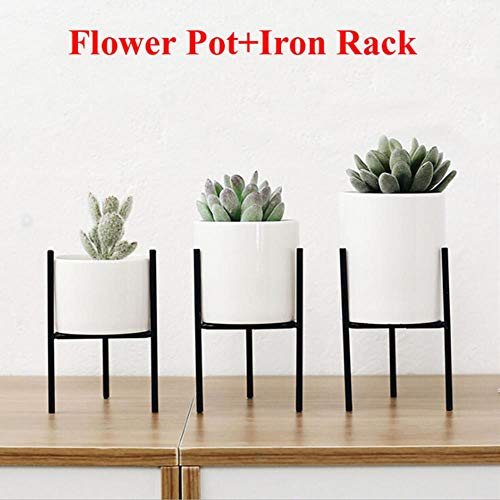 CTOBB Solide bloempotten, staande balkon, tuinplant, metaal, ijzer, plantenbak, wooncultuur, kort en hoog Small zwart