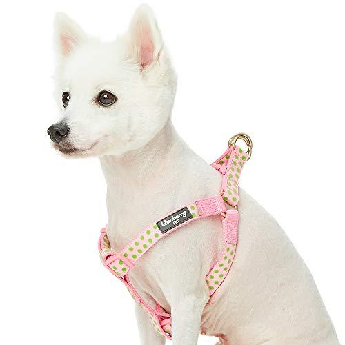 Blueberry Pet Valentins-Tupfen-Beflockung Samtiges Step-in-Hundegeschirr in Baby-Pink, Brustumfang 51cm-66cm, M, Verstellbare Geschirre für Hunde