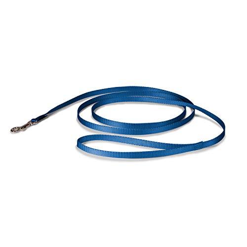 Premier Leash, 3/8 by 6-Feet, Royal Blue