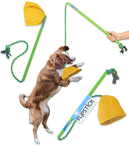 Pet Qwerks Flipstick Chase & Tug Interactive Dog Flirt Pole - Dog Teaser Wand, Dangling Tether Dog Toy, Avoids Boredom, Keeps Dogs Active, Also Great Toy for Two Dogs to Play Together