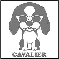 エブリーペット めがね犬ステッカー(シルバー) キャバリア(通常サイズ)