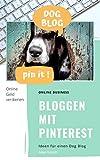 Bloggen mit Pinterest: Online Geld verdienen. PROFESSIONELLER GUIDE