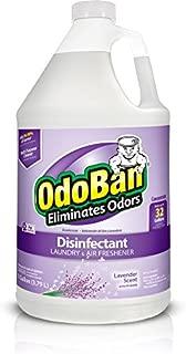 OdoBan Multipurpose Cleaner Concentrate, 1 Gal, Lavender Scent - Odor Eliminator, Disinfectant, Flood Fire Water Damage Restoration