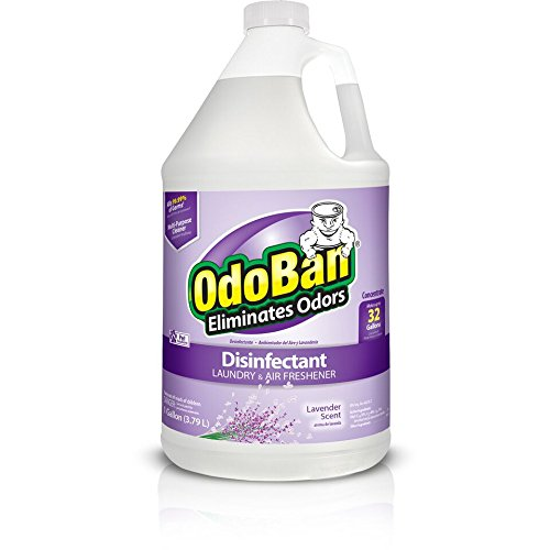 Clean Control Odoban Gal Lav Cleaner, 9.0 Pound