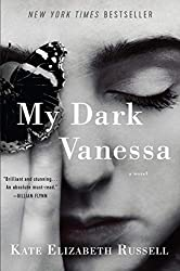 Rich results on Google's SERP when searching for 'my dark vanessa'