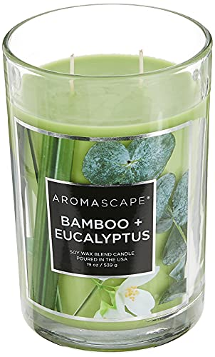 Aromascape PT41900 2-Wick Scented Jar Candle, Bamboo & Eucalyptus, 19-Ounce, Green