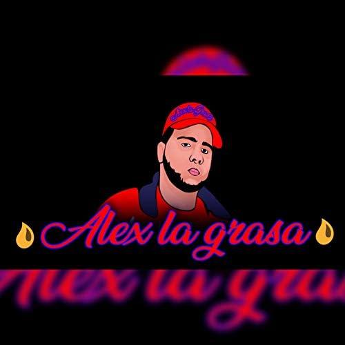 Alex la grasa
