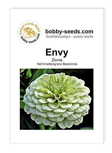 Bobby-Seeds Zinnien Samen Envy Portion