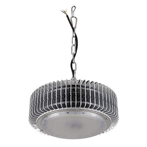 Bulary 220 V 100 W High Bay LED Spot Licht, Wasserdicht IP65 High Bay Weißes Licht, Arbeitsscheinwerfer, Bergbaulampe Für Fabrik, Industrie Werkstatt Website