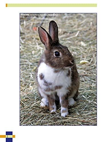 Leben mit Kaninchen: Der ausführliche Leitfaden für die Haltung von Kaninchen. (NTV Kleinsäuger) - 5