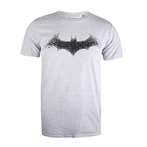 DC Comics Batman-Bat Logo T-Shirt, Grigio (Grey Heather Hgy), Medium Uomo