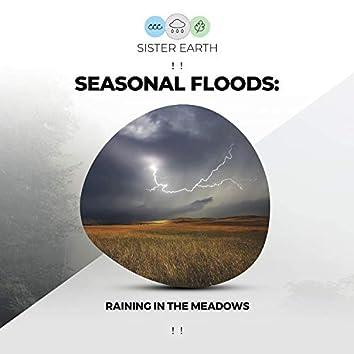 ! ! Seasonal Floods: Raining in the Meadows ! !