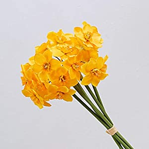 MYMR Artificial Flowers, Narcissus Bouquet (6 Branches 1 Bunch), Used for Party, Home Decoration, Living Room Decoration, Table Flowers, Silk Flowers, Plastic Flowers, Indoor Decoration