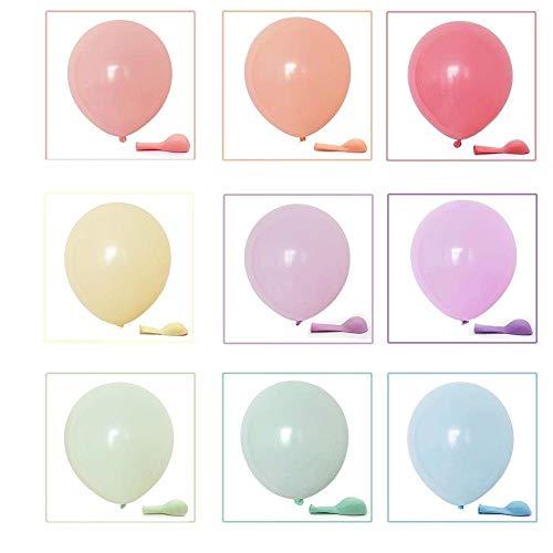 MARYLIKESFLOWERS Macaron - Globos de arco iris (10 pulgadas, 100 unidades)