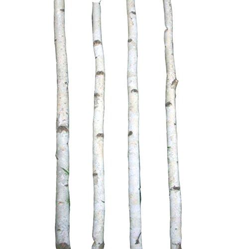 Four Thin White Birch Poles 8 ft