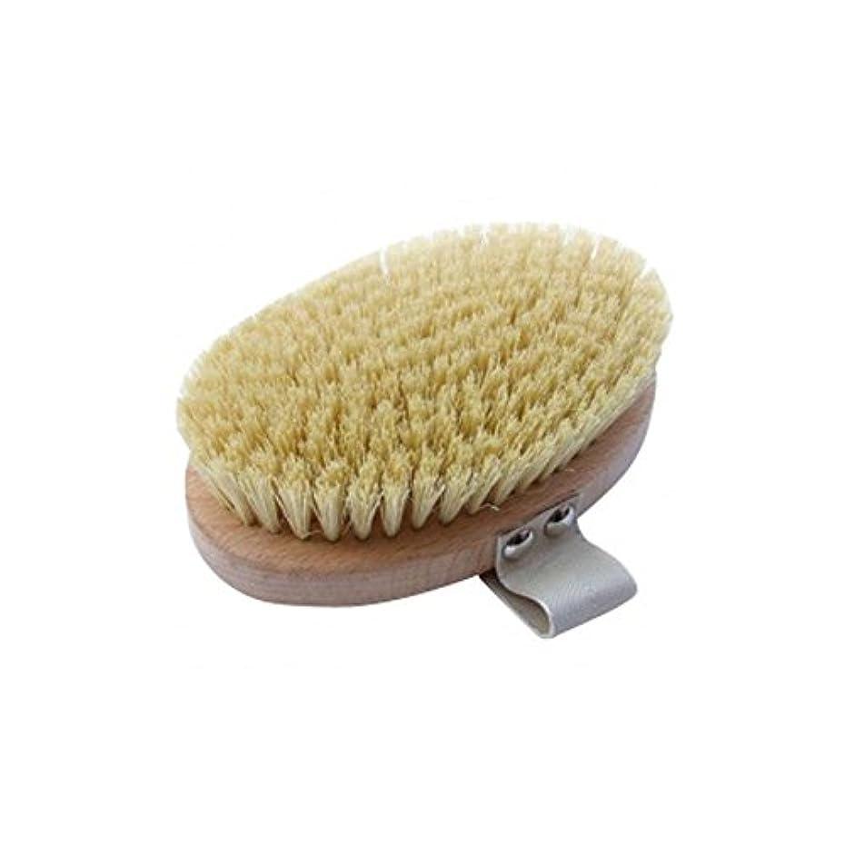 失われた瀬戸際怪しいHydrea London Beech Wood Body Brush With Cactus Fibre Bristles - サボテンの繊維毛とハイドレアロンドンブナの木のボディブラシ [並行輸入品]