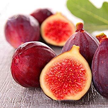 Fash Lady BELLFARM Ficus Carica Tree Fruit Graines, 5 graines, emballage professionnel, peau rouge rose rouge à l'intérieur de fruits biologiques sucrés