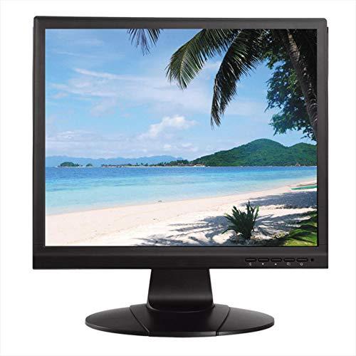 LM19-L100 Monitor LCD 19