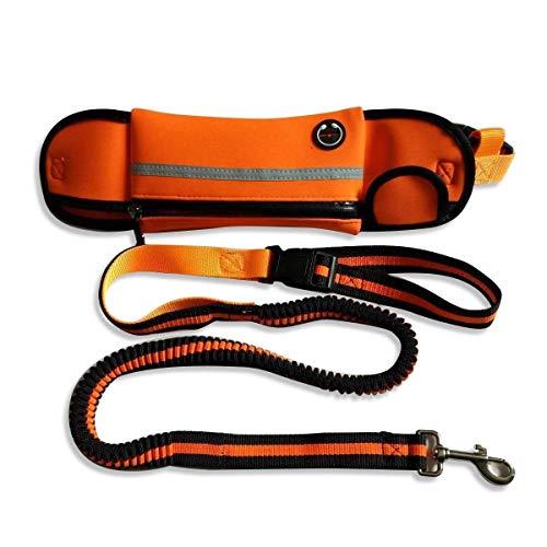 HEMFV Zugseil, Sport Pet Teleskop Zugseil, Stoßdämpfung, for kleine und mittlere Pet (Color : Orange)