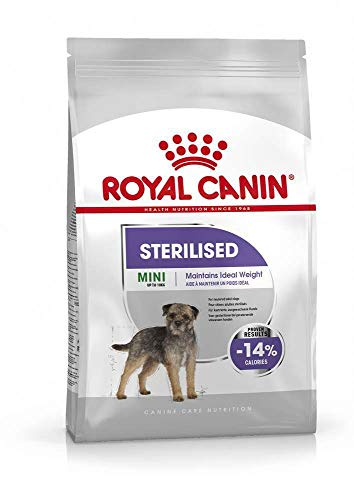 Royal Canin C-08379 S.N. Mini Sterilised - 8 Kg 🔥