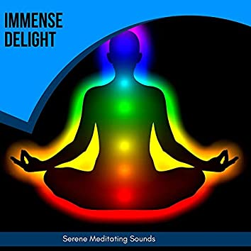 Immense Delight - Serene Meditating Sounds