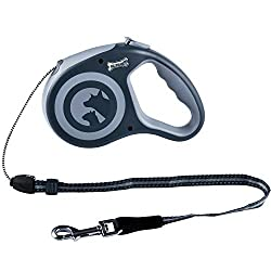 Best Retractable Dog Leash - 2021 Reviews & Buyers Guide