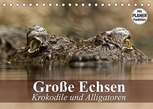 Große Echsen. Krokodile und Alligatoren (Tischkalender 2022 DIN A5 quer)