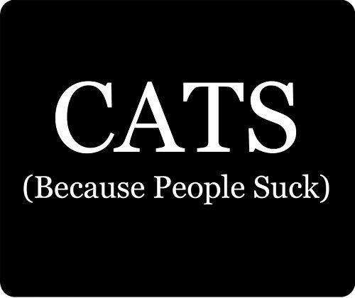 Katzen, weil Leute Mauspad saugen