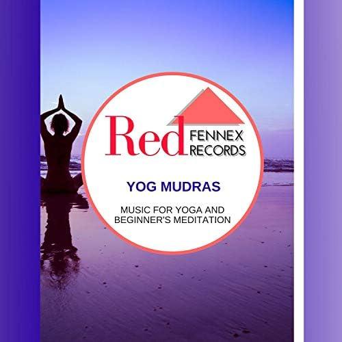 Hridya Chintan, Forest Therapy, Dr. Bendict Nervo, Binural Healers, Zen Town, Ultra Healing, Power Diggers, Dr. Krazy Windsor, Dr. Yoga & Brian Thetus