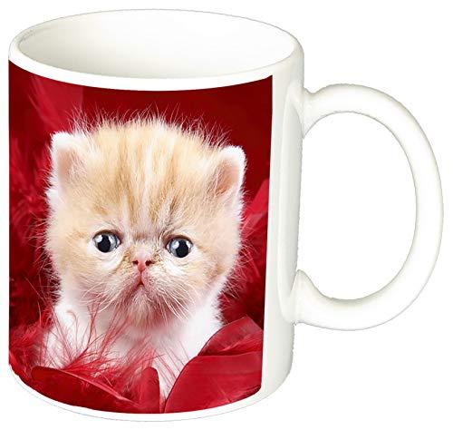 MasTazas Gatitos Gatos Kittens Cats F Tasse Mug