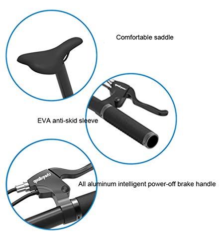 SHIJING Elektrische vouwfiets, 16 inch, afneembare batterij, grote fiets, super lichte fiets, met afneembare batterij,