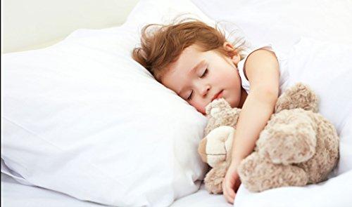 Digital Decor Gold Down Alternative Sleeping Pillows