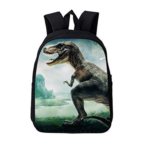 Dinosaurier Rucksack Magic Dragon Rucksack für Kinder Tiere Kinder Schultaschen Jungen Mädchen Schultaschen Schultasche
