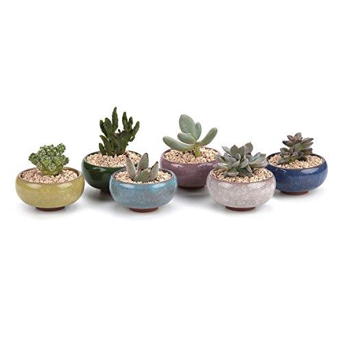 T4U 6.5CM Keramik Sukkulenten Töpfe Kaktus Pflanze Töpfe Mini Blumentöpfe EIS Crack Zisha Serie 6 Fraben 6 Stücke Set