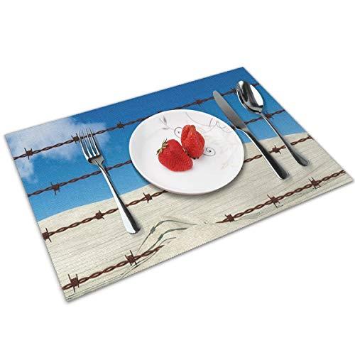 QCFW Manteles Individuales Alambre de espino, Mantel Individual Antideslizante Resistente Al Calor Salvamanteles Juego de 4 para La Mesa de Comedor de Cocina