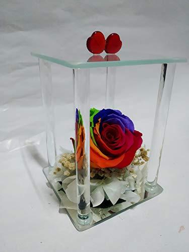 Rosa eterna Arcoiris Composición de Cristal de 4 columnas, Altura 14 cm, Rosa preservada Natural Arco Iris, sobre Base de Flores preservadas. Rosa Natural preservada Arco Iris. Hecho en España.