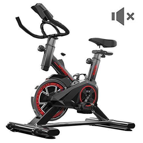 Dann Bicicleta Estática Ciclismo De Interior con Manillar Y Asiento Cómodo Bicicleta De Ejercicio con Monitor LCD para Ejercicios En Casa Y Cardio