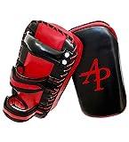 AP Training Kampfsport Training Kick Pratze