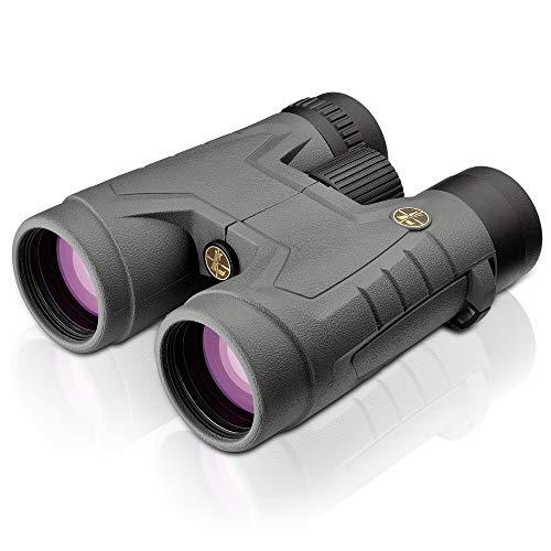 Leupold BX-2 Acadia 10x42mm Binocular , Shadow Gray