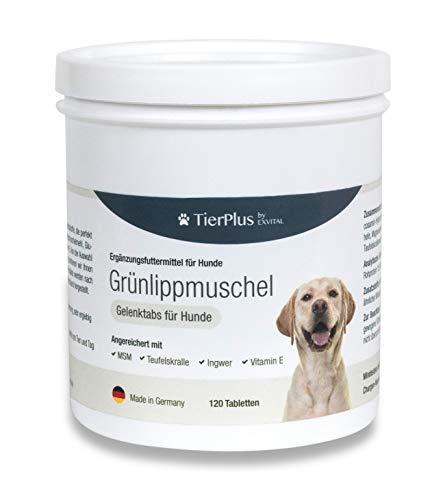 EXVital TierPlus Grünlippmuschel für Hunde mit MSM, Ingwer, Chondroitin, Glucosamin und Teufelskralle angereichert. Hohe Fressakzeptanz, 120 Gelenktabletten, Made in Germany