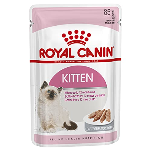 Royal Canin Kitten Comida para Gatos, 85 gr, paquete de 12