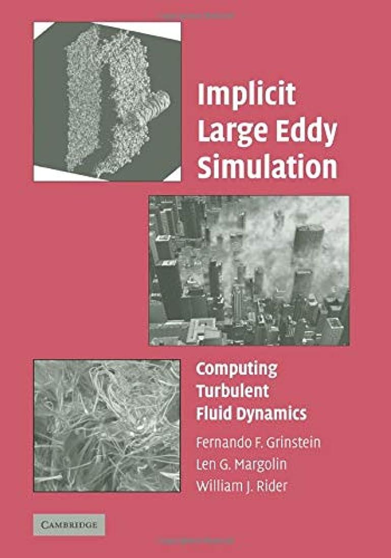 狂信者スポット暗いImplicit Large Eddy Simulation: Computing Turbulent Fluid Dynamics