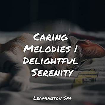 Caring Melodies | Delightful Serenity