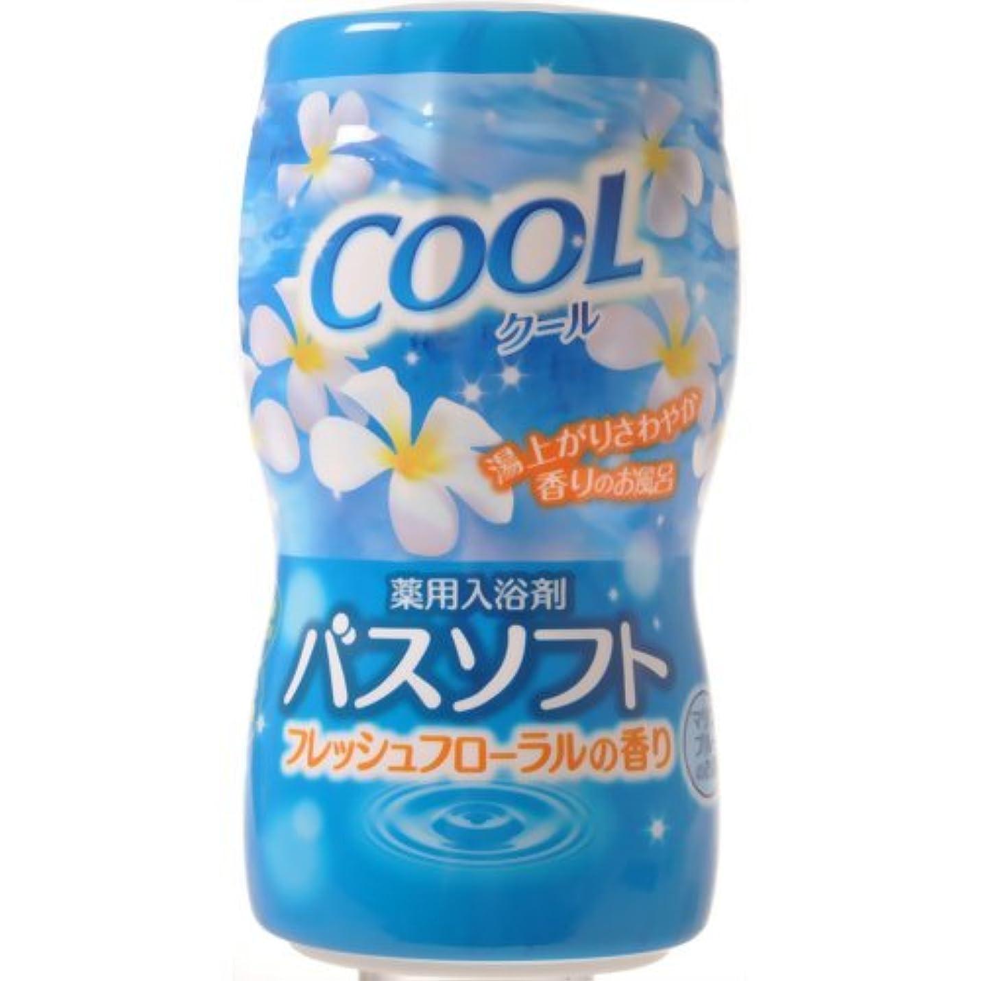 櫛フィードオズワルド【オカモト】薬用入浴剤バスソフト クール 700g