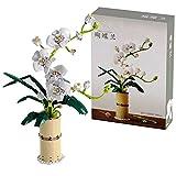 icuanuty Phalaenopsis Flower Bouquet Kit De Construcción Creativo Immortal Flower Bonsai Decoración del Hogar Bloques De Construcción Compatibles con Lego New 2021 (588 Piezas)