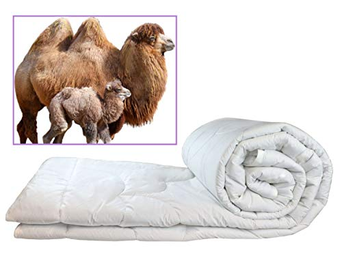 100% Natural Camel Wool Filled Comforter, Thick Duvet for Winter (Queen, 86x86)